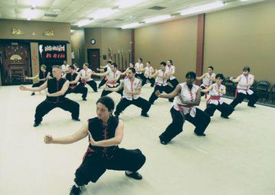 Choy Li Fut Class